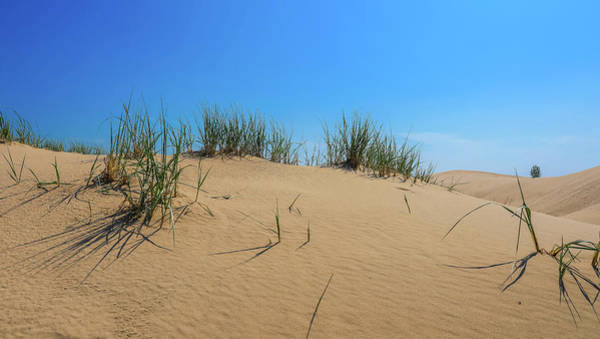 Wall Art - Photograph - Sleeping Bear Sand Dunes by Dan Sproul