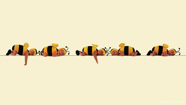 Wall Art - Photograph - Sleeping Bees by Anne Geddes