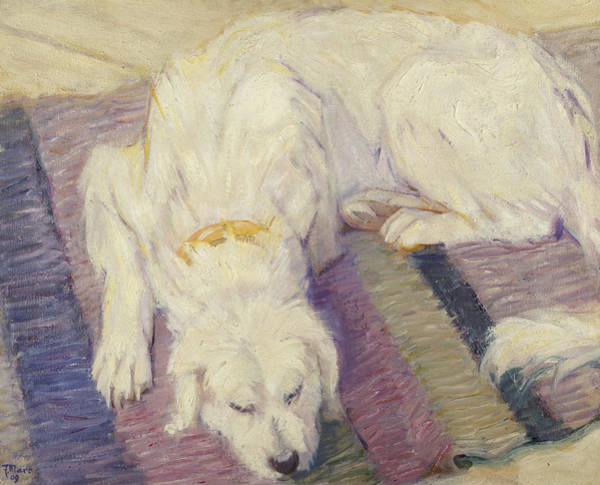Hair Of The Dog Wall Art - Painting - Sleeping Dog by Franz Marc
