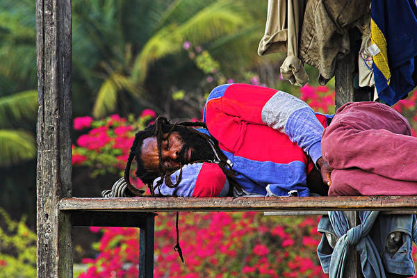 St. Lucia Photograph - Sleeping Rasta-st Lucia by Chester Williams