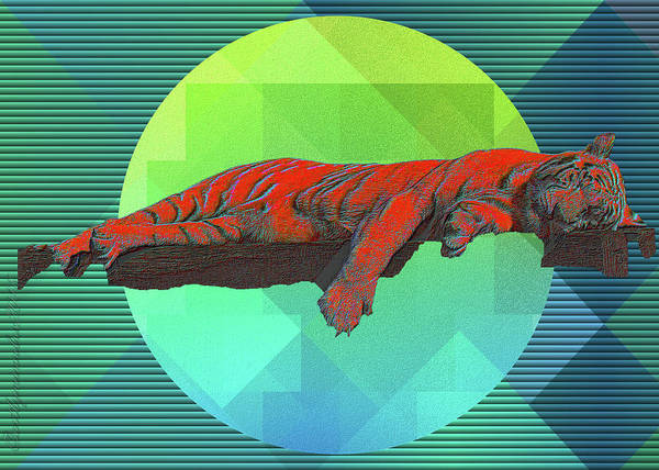 Digital Art - Sleeping Tiger by Mimulux patricia No