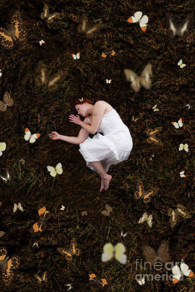 Photograph - Sleeping With The Buterflies by Clayton Bastiani