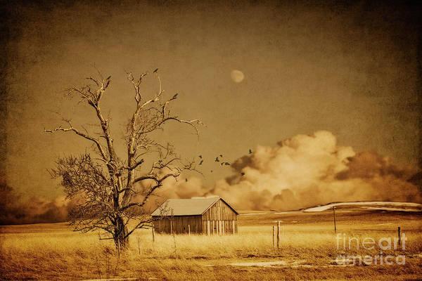 Wall Art - Photograph - Sleepy Barn by Todd Bielby