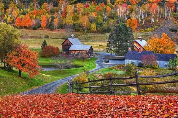 Photograph - Sleepy Hollows Farm Woodstock Vermont Vt Autumn Bright Colors by Toby McGuire