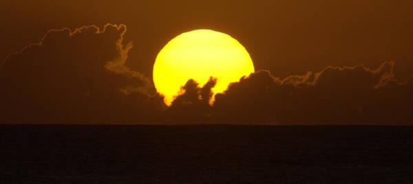 Photograph - Sleepy Sun by Brad Scott