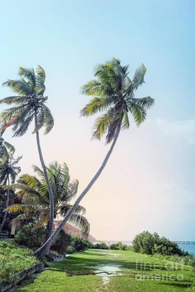 South Florida Wall Art - Photograph - Slice Of Paradise by Evelina Kremsdorf