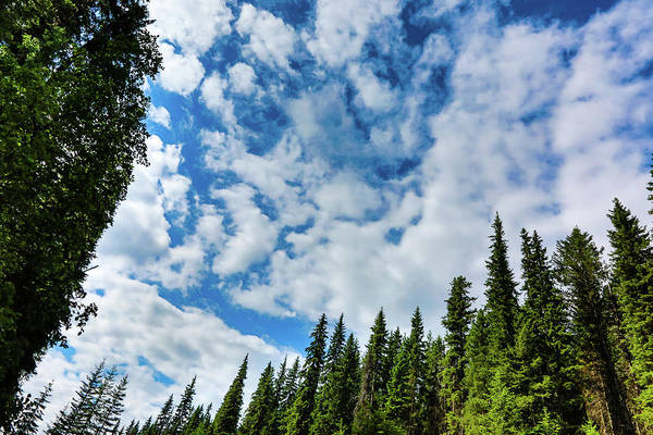 Wall Art - Photograph - Slice Of Sky by Monte Arnold