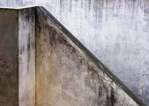 Wall Art - Photograph - Slide Up by Prakash Ghai