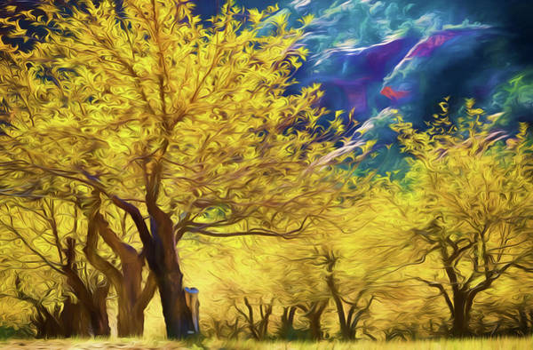 High Dynamic Range Digital Art - Sliderock Apples Fall by Scott Campbell