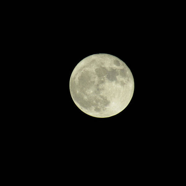 Photograph - Slightly Off Center Super Moon by Robert Knight