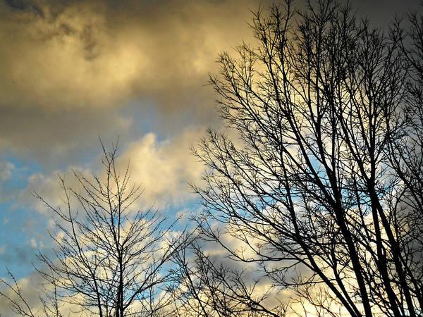 Photograph - Slightly Overcast by Cyryn Fyrcyd