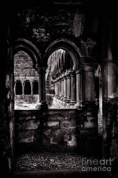 Wall Art - Photograph - Sligo Abbey Interior Bw by RicardMN Photography