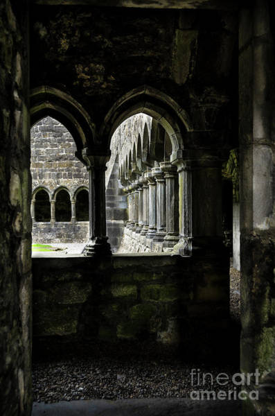 Wall Art - Photograph - Sligo Abbey Interior by RicardMN Photography