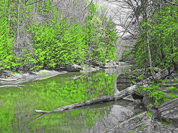 Photograph - Slippery Rock Creek In Spring by Digital Photographic Arts