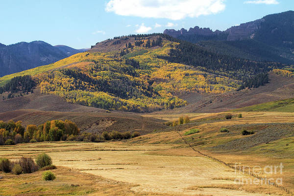 Photograph - Slopes Of Gold by Jim Garrison