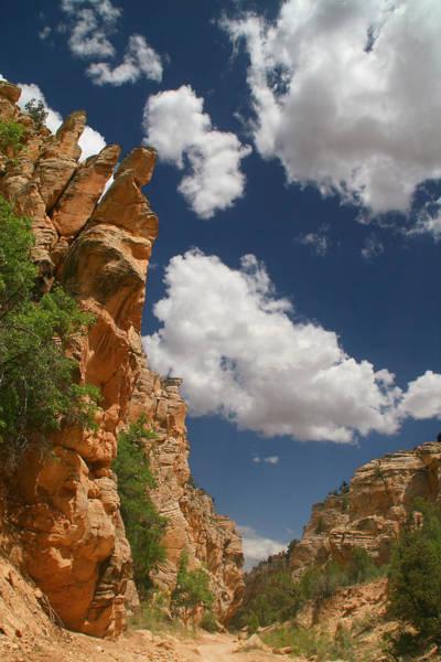 Photograph - Slot Canyon by Mark Smith
