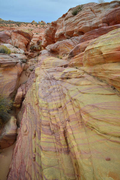 Photograph - Slot Of Gold In Valley Of Fire by Ray Mathis