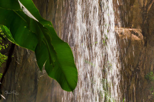 Photograph - Slow Motion Tropical Waterfall by Susan Molnar