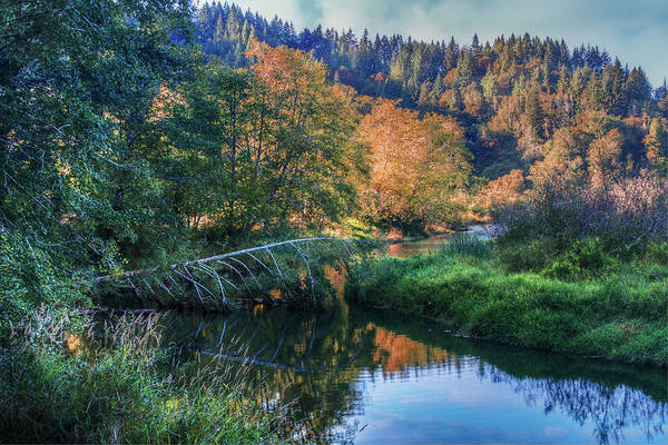 Photograph - Slow Moving River by Debra and Dave Vanderlaan