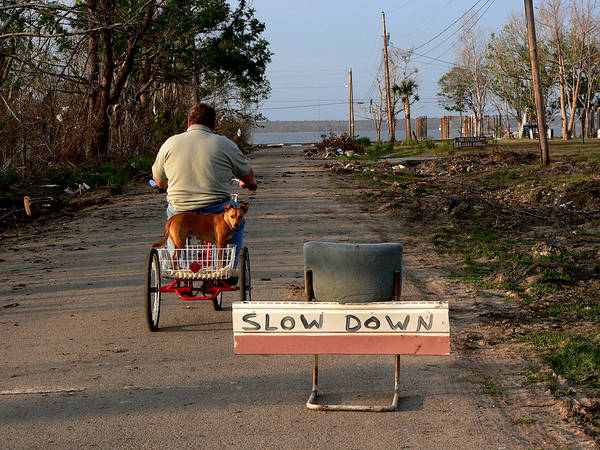 Photograph - Slowing Down by Kathy K McClellan