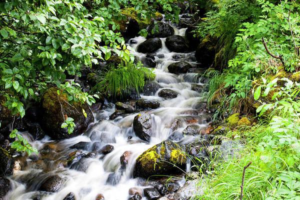 Photograph - Small Alaskan Waterfall by Anthony Jones