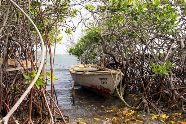 Photograph - Small Boat At St. Joris Bay by For Ninety One Days