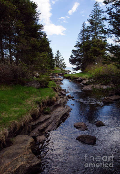 Photograph - Small Brook Going To The Ocean, Chamberlain, Maine  -60047 by John Bald