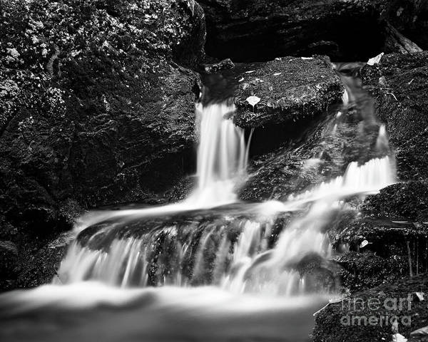 Photograph - Small Creek 1 by Patrick M Lynch