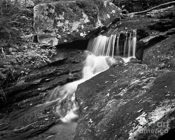 Photograph - Small Creek 2 by Patrick M Lynch
