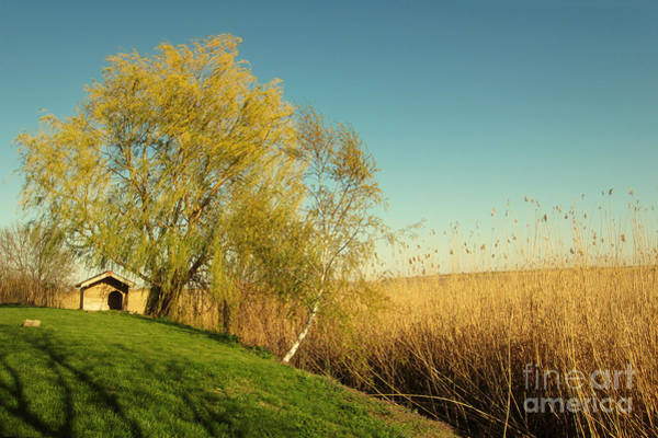 Photograph - Small House On The Lake by Dimitar Hristov