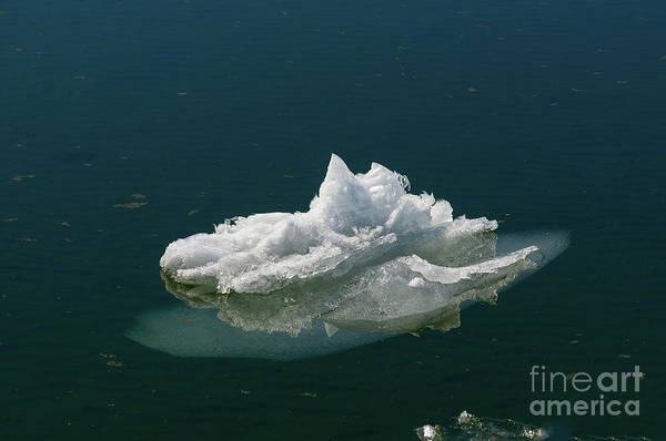 Photograph - Small Iceberg  by Les Palenik
