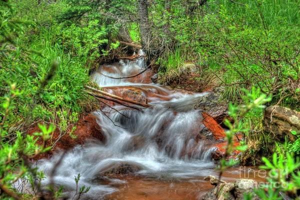 Photograph - Small Mountain Stream by Tony Baca