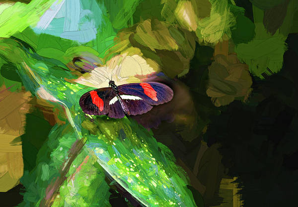 Passion Butterfly Photograph - Small Postman Butterfly - Impasto by Steve Harrington