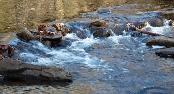 Photograph - Small Rapids by Richard Goldman