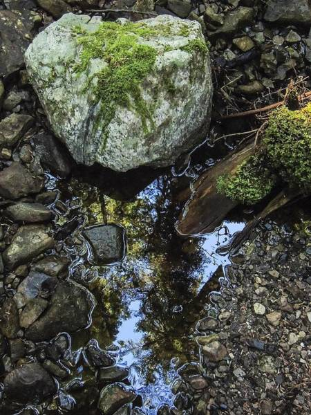 Photograph - Small Reflection Pool And Moss Covered Rock by NaturesPix