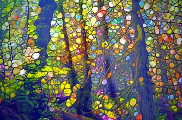 Elation Digital Art - Small Spirits Of The Forest by Tara Turner