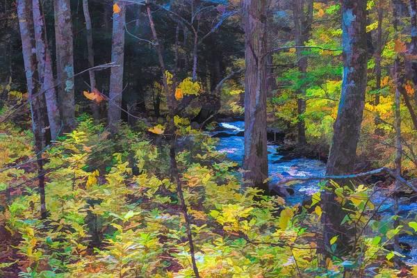 Digital Art - Small Stream Through Autumn Woods by Rusty R Smith
