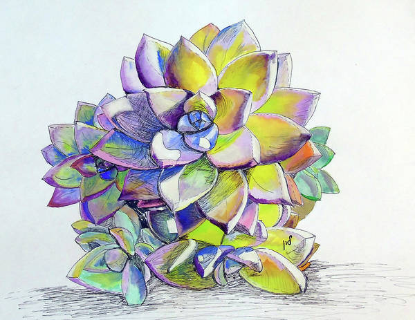 Garden Wall Drawing - Small Succulent 1 by Maria Woithofer