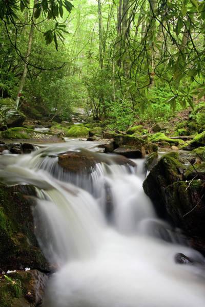 Photograph - Small Waterfall by Jill Lang