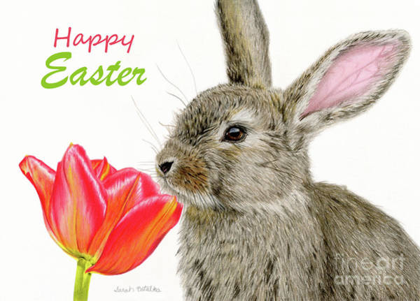Rabbit Painting - Smells Like Spring- Happy Easter Cards by Sarah Batalka