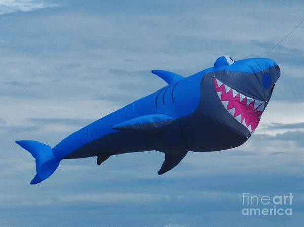 Flying A Kite Photograph - Smiling Shark by Snapshot Studio