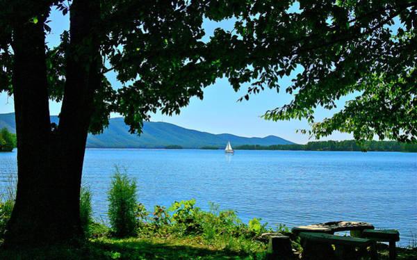 Photograph - Smith Mountain Lake Sailor by The American Shutterbug Society