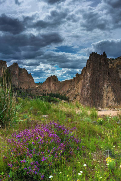 Photograph - Smith Rock by Bryan Xavier