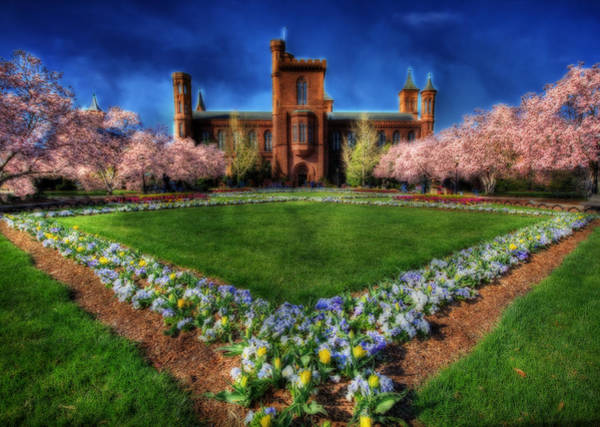 Photograph - Spring Blooms In The Smithsonian Castle Garden by Shelley Neff
