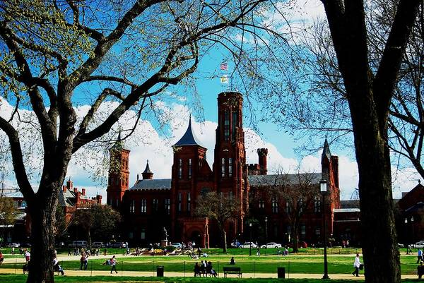 Smithsonian In The Spring Art Print