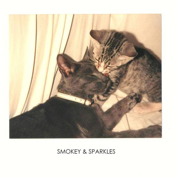 Photograph - Smokey And Sparkles by VIVA Anderson