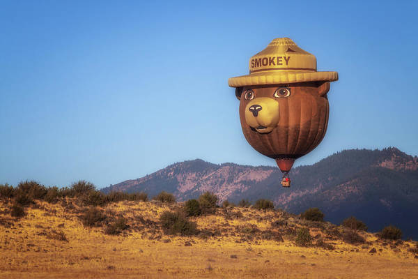 Wall Art - Photograph - Smokey Bear Balloon by Marnie Patchett