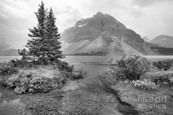 Photograph - Smokey Bow Lake Scene Black And White by Adam Jewell