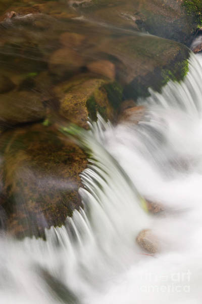 Photograph - Smokies Cascade by Richard Sandford