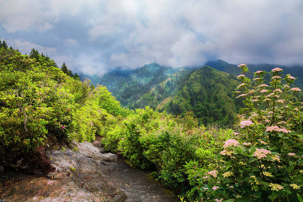 Photograph - Smoky Mountain Overlook by Debra and Dave Vanderlaan